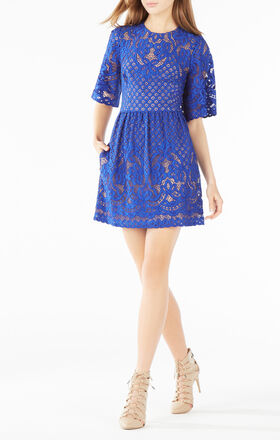 BCBG Floral Lace Dress