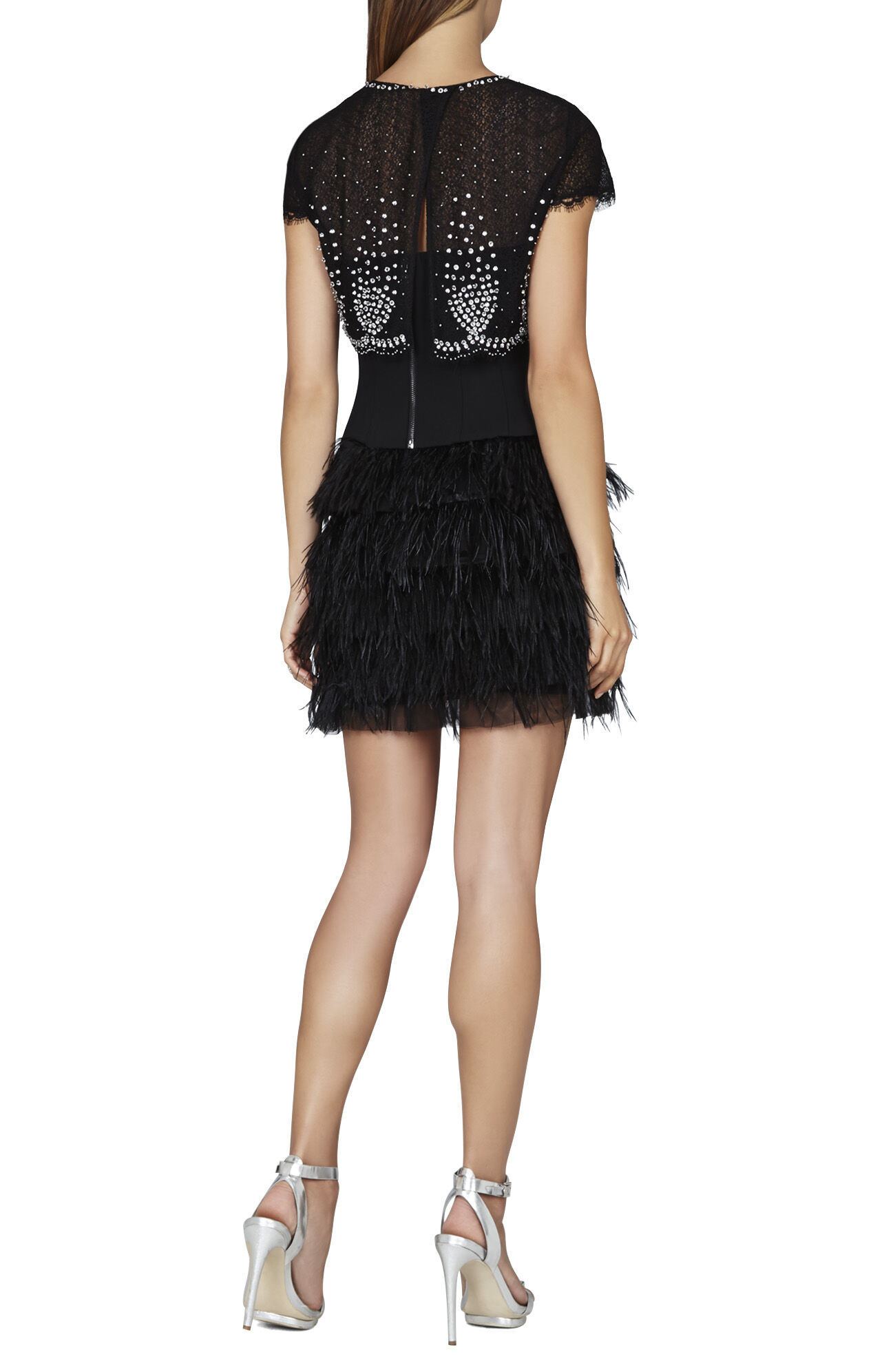 Karley Embellished Overlay and Feather Skirt Dress
