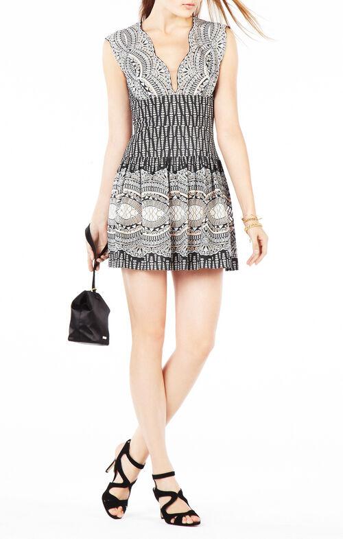 Carolena Burnout Deco Print Mesh Dress