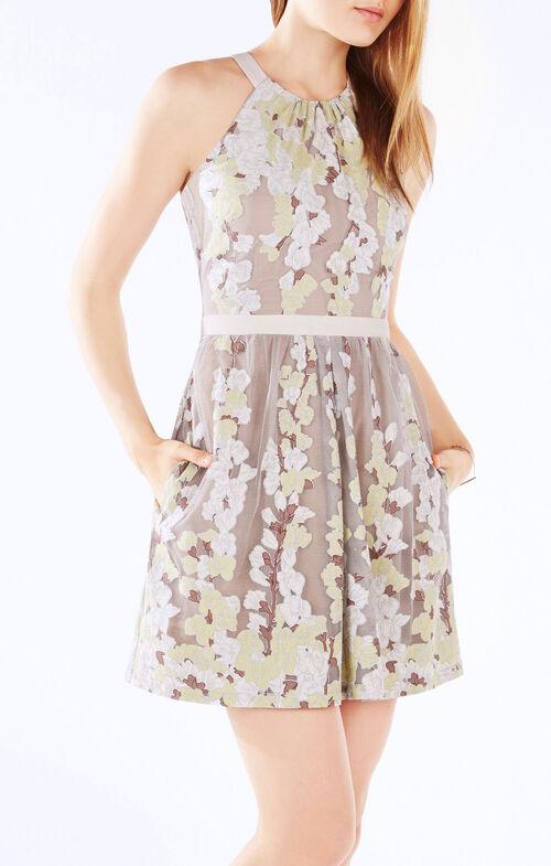 Cailyn Burnout Floral Print Dress