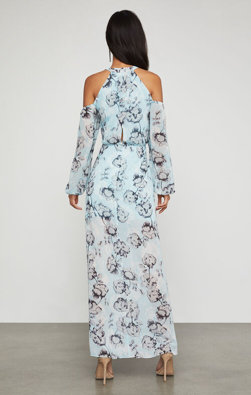 Isabele Floral-Print Maxi Dress