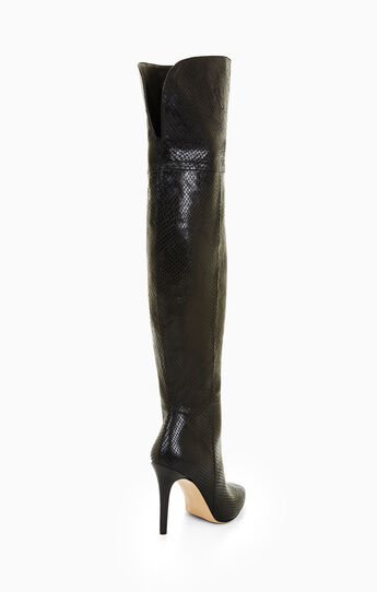 Alannah Leather Over-The-Knee Boot