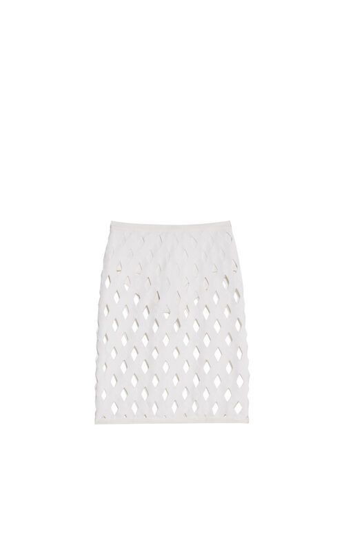 Robyn Overlay Zigzag Skirt