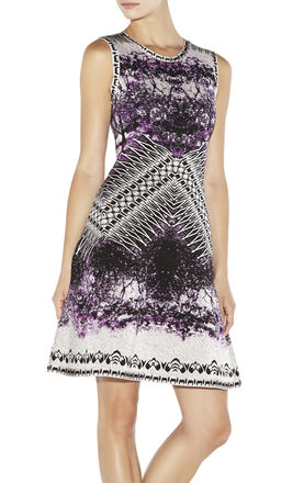 Polina Photographic Jacquard Dress