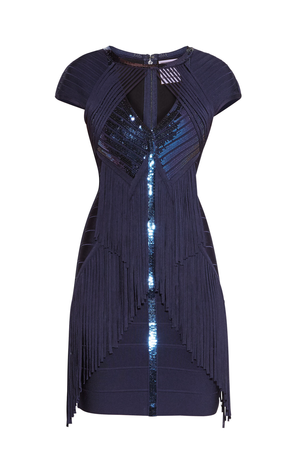 Kassidy Sequined Fringe Dress