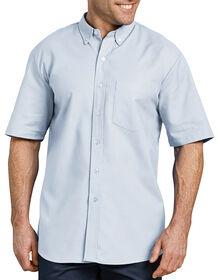 Button-Down Oxford Short Sleeve Shirt - WHITE/BLUE STRIPE (BS)
