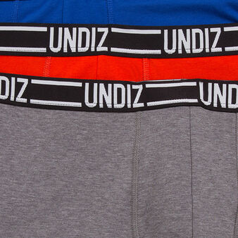 Set of three bleuiz boxer shorts grey.