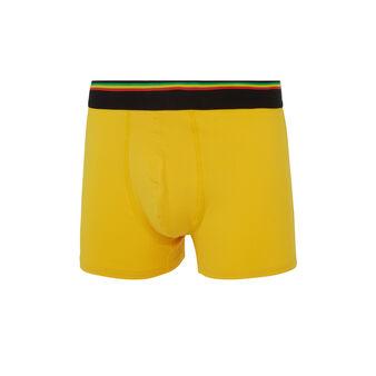 Bóxer amarillo rastaiz yellow.