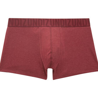 Boxer bordeaux patouchiz red.