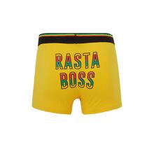 Rastaiz yellow boxers yellow.