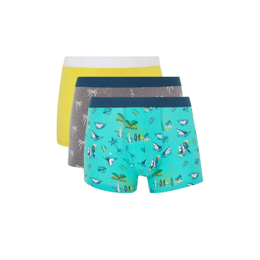 Lot de boxer attaquiz;${refinementColor}