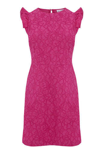 Warehouse, FRILL SLEEVE BONDED LACE DRESS Bright Pink 0