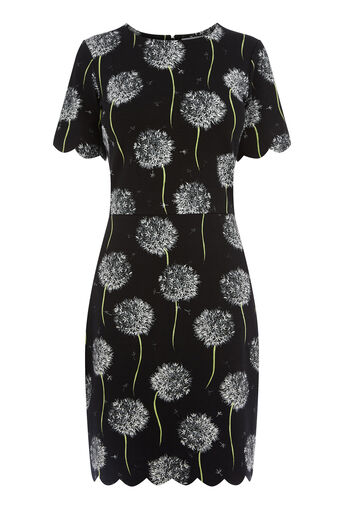 Warehouse, DANDELION PRINT SCALLOP DRESS Black Pattern 0