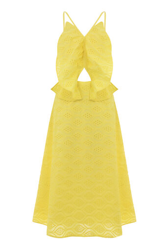 Warehouse, BROIDERY BUTTERFLY DRESS Yellow 0