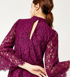 Warehouse, TWO TONE LACE DRESS Raspberry 4