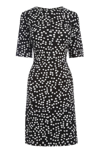 Warehouse, DITSY FLORAL PONTE DRESS Black Pattern 0