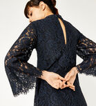 Warehouse, TWO TONE LACE DRESS Navy 4