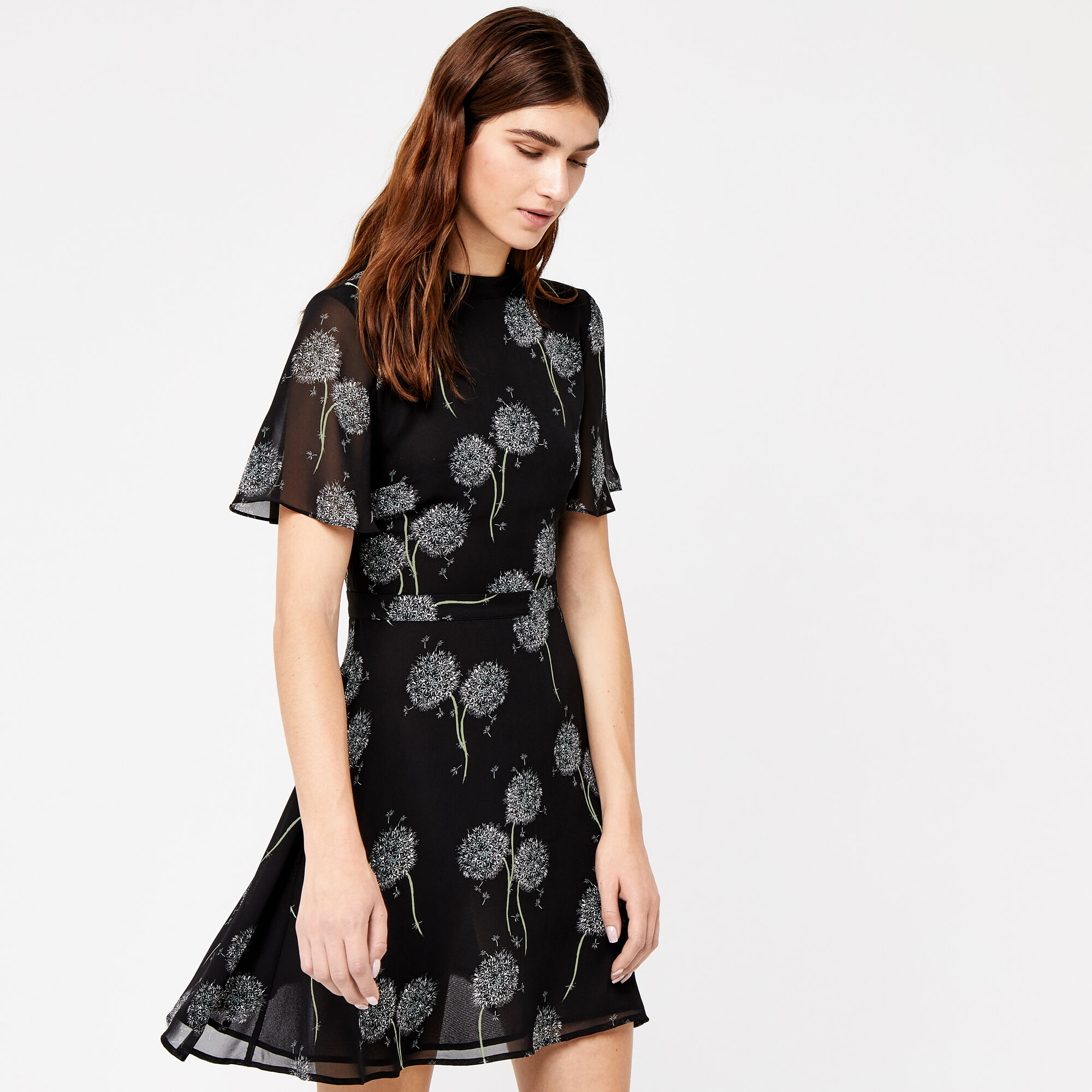Warehouse, DANDELION PRINT DRESS Black Pattern 1