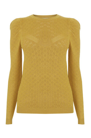 Warehouse, POINTELLE PUFF SLEEVE JUMPER Mustard 0
