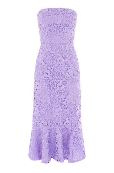 Warehouse, STRAPLESS PREMIUM LACE DRESS Light Purple 0