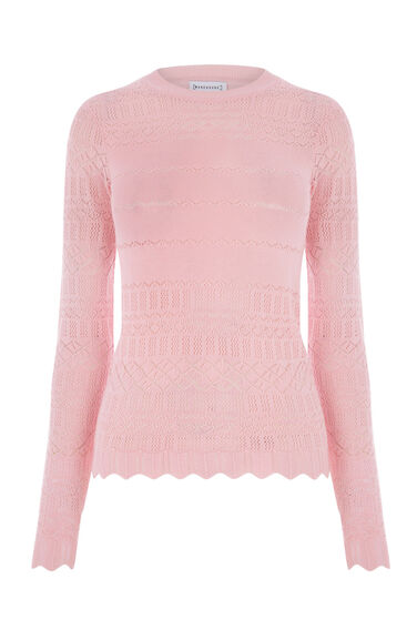 Warehouse, PRETTY POINTELLE JUMPER Light Pink 0