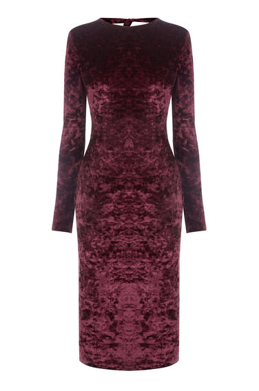 Warehouse, VELVET BODYCON DRESS Berry 0