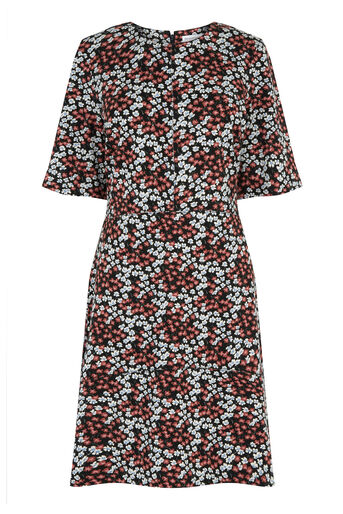 Warehouse, SWEET WILLIAM PONTE DRESS Multi 0
