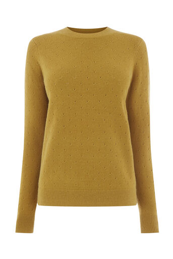 Warehouse, COSY POINTELLE JUMPER Mustard 0