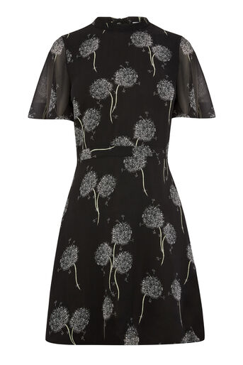 Warehouse, DANDELION PRINT DRESS Black Pattern 0