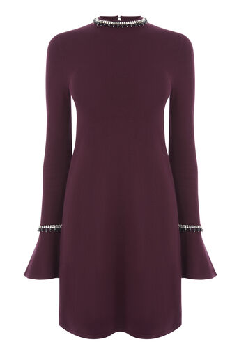 Warehouse, EMBELLISHED FLARE CUFF DRESS Berry 0