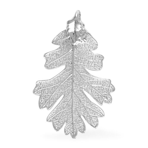 Real Natural Lacey Oak Leaf Pendant (Size 4.5 - 5 Cm) Dipped in Silver