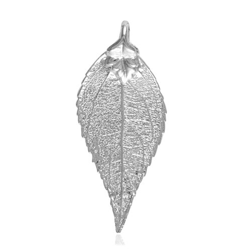 Real Evergreen Leaf Jumbo Pendant (Size 7 - 7.5 Cm) Dipped in Silver