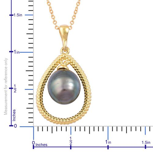 Tahitian Pearl Solitaire Pendant With Chain in Yellow Gold Overlay Sterling Silver