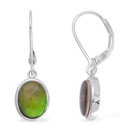 Canadian Ammolite (Ovl) Lever Back Earrings in Rhodium Plated Sterling Silver 2.750 Ct.