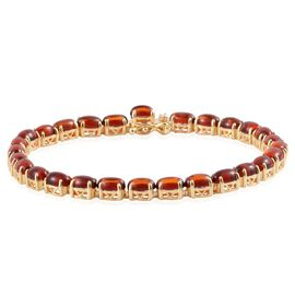 Baltic Amber (Ovl) Bracelet in Yellow Gold Overlay Sterling Silver (Size 7) 5.000 Ct.