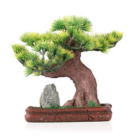 Home Decor - Bonsai Pine Tree with Goldstone and Resin Planted in Dark Red Rectangle Shape Base