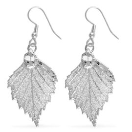 Real Birch Leaf Hook Earrings Dipped in Silver