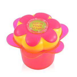 Flower Pot Detangling Detangler Hair Brush- Yellow Hair Brush