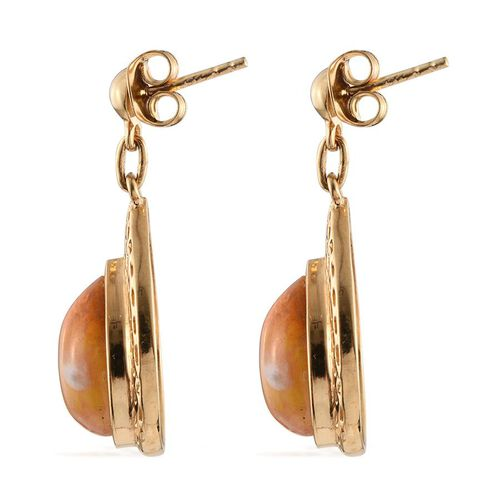 Bumble Bee Jasper (Pear) Earrings (with Push Back) in 14K Gold Overlay Sterling Silver 11.500 Ct.