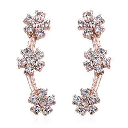 Espirito Santo Aquamarine 1 Carat Silver Floral Climber Earrings in Rose Gold Overlay