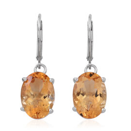 Rare Size AAA Uruguay Citrine  (Ovl) Lever Back Earrings in Rhodium Plated Sterling Silver 10.000 Ct.