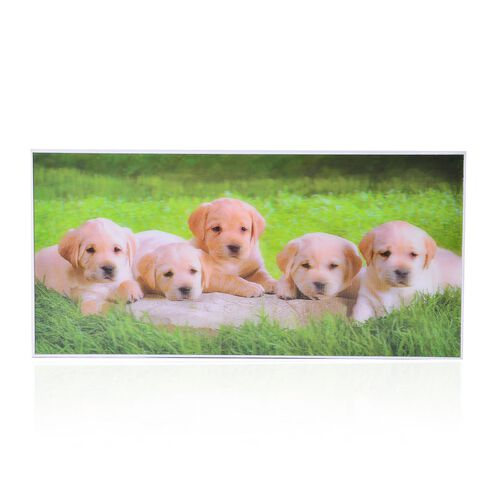Wall Decor - Dogs Framed 4D Wall Painting (Size 38.5x18.5x3 Cm)