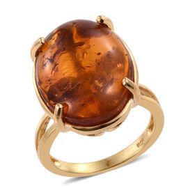 Very Rare Size Baltic Amber (Ovl 20x15) Solitaire Ring in 14K Gold Overlay Sterling Silver 6.500 Ct.