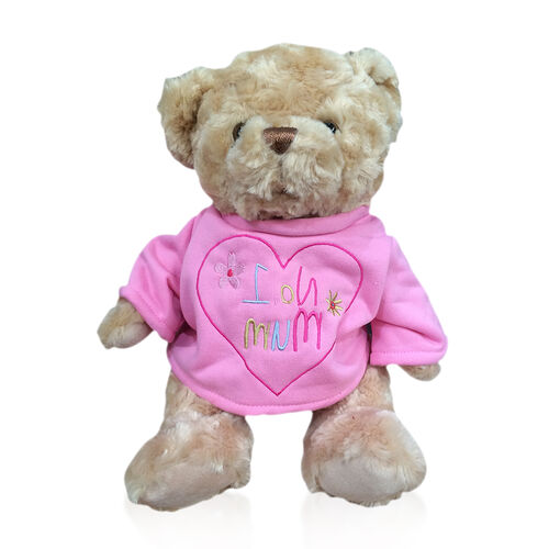Limited Available-Teddy Bear Soft Toy