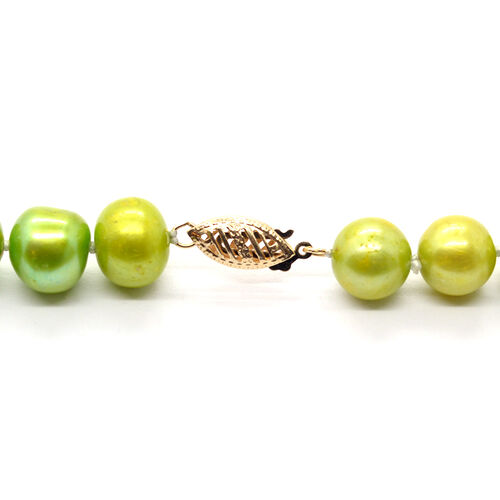 9K Y Gold Fresh Water Green Pearl (Rnd) Necklace (Size 18) 210.000 Ct.