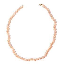9K Y Gold Fresh Water Peach Pearl Necklace (Size 18)