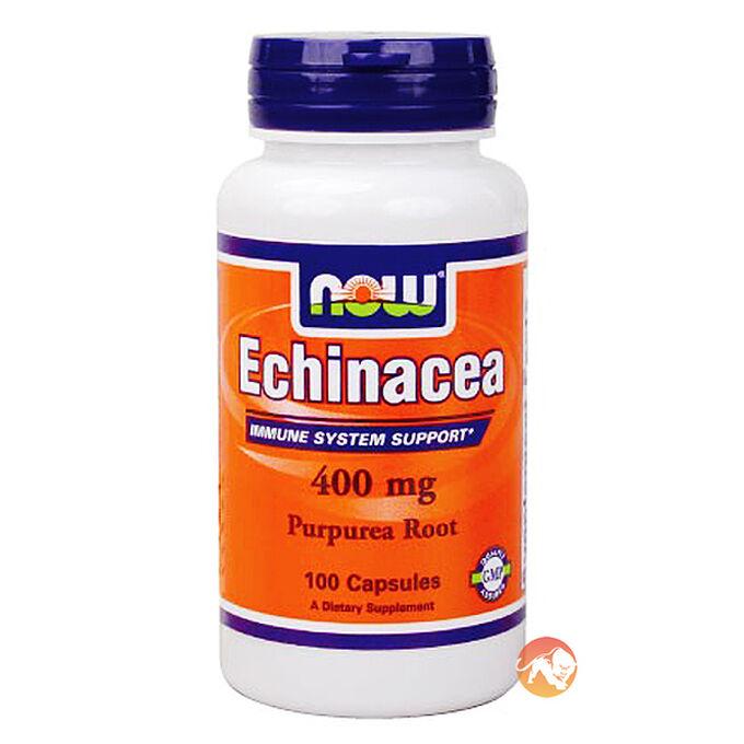 Echinacea Root 100 Caps