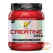 DNA Creatine