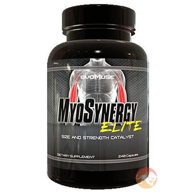 Myosynergy Elite 240 Capsules
