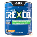 Crexcel 40 Servings - Orange Rush